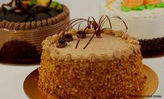 Baker Street, Ambience Mall, Gurgaon, deal image - Magicpin
