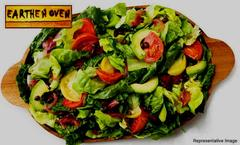 Earthen Oven - Fortune Select Excalibur, Sohna Road, Gurgaon, deal image - Magicpin