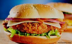 Burger Xpress, Sohna Road, Gurgaon, deal image - Magicpin