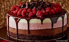 The Cake Story, Sector 50, Gurgaon, deal image - Magicpin